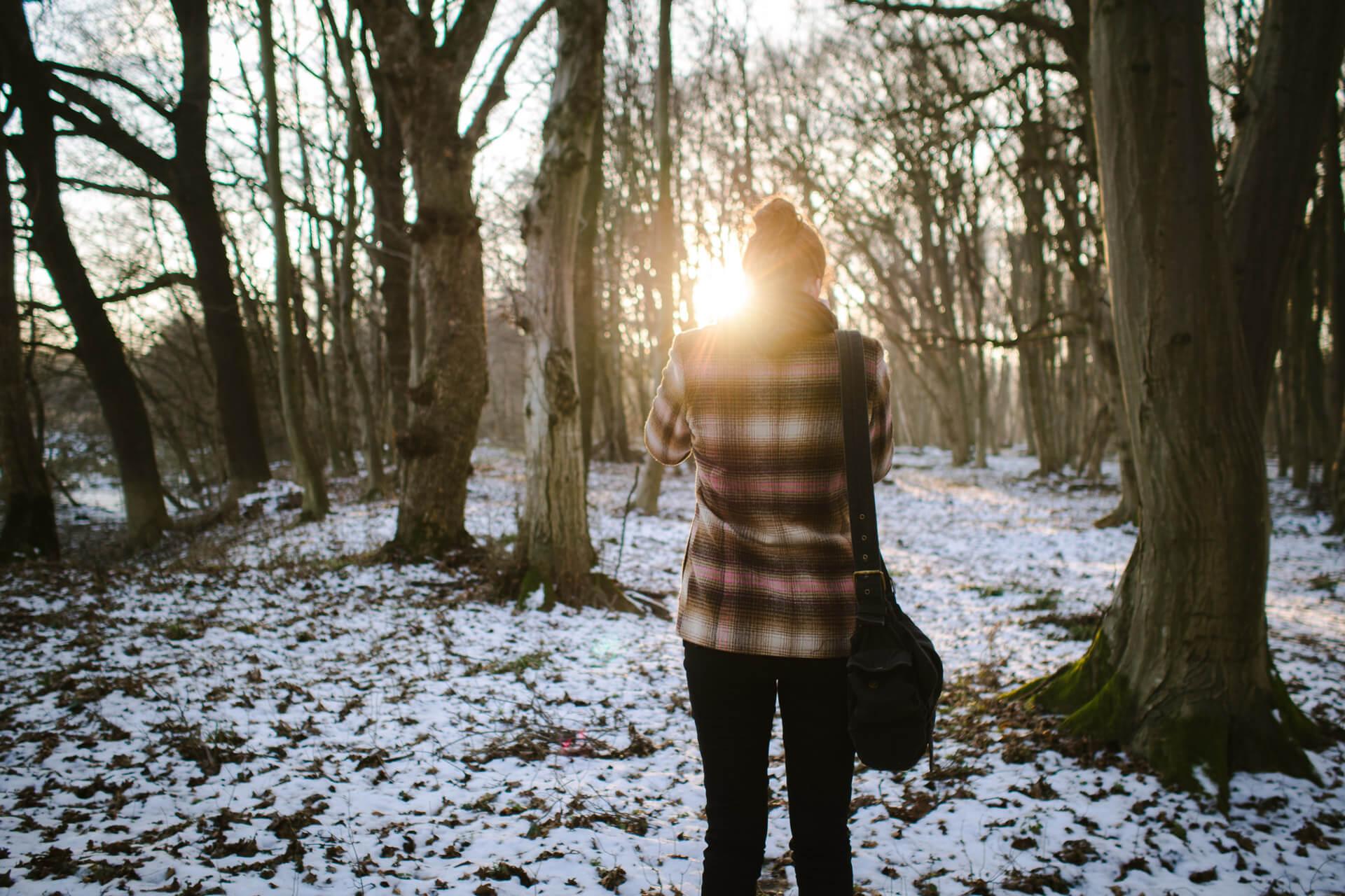 Tündi, erdő, tél
